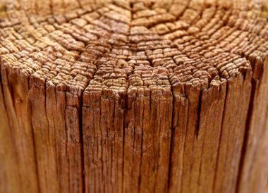 Die offene Oberfläche am oberen Ende dieses Holzpfostens sollte durch eine Pfostenkappe vor eindringendem Wasser geschützt werden